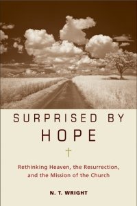 Cover, Suprised by Hope
